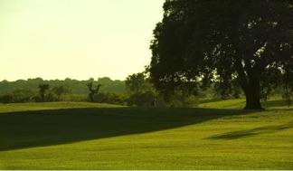 Valdeluz Golf Campo asociado